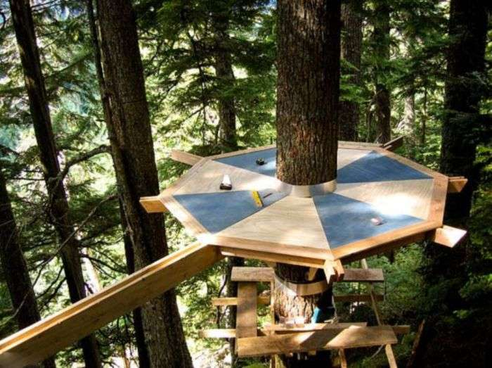 Будиночок на дереві (13 фото)