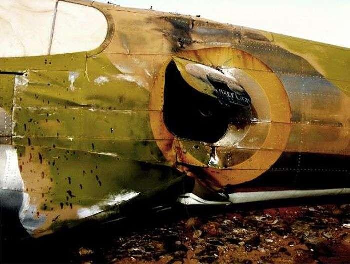 Відлуння війни (25 фото)
