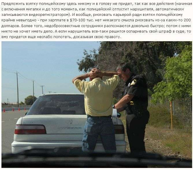 Як працює поліція в США (26 фото)