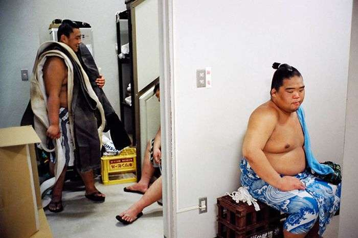 Повсякденне життя борців сумо (22 фото)