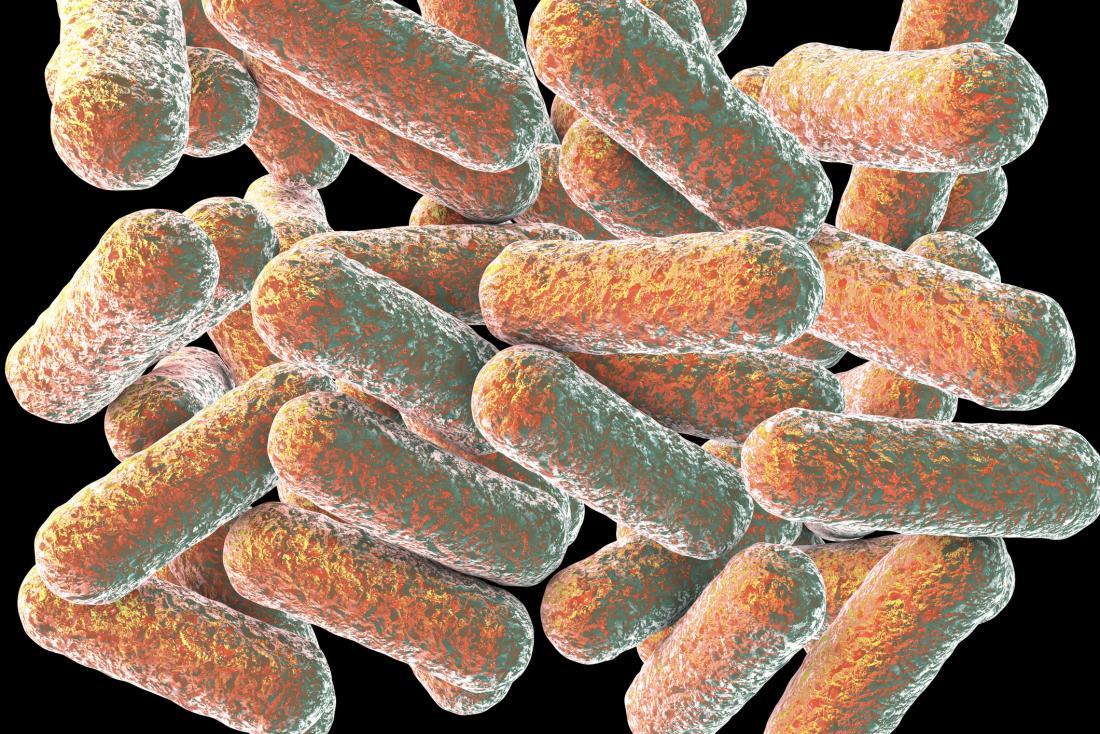 Смерть антибиотиков: мы лишаемся эффективных лекарств для борьбы с армией супербактерий антибиотики,медицина,технологии будущего,фармацевтика